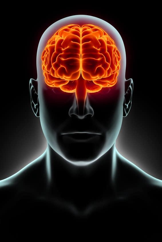 Être bilingue: quels impacts  sur le cerveau?