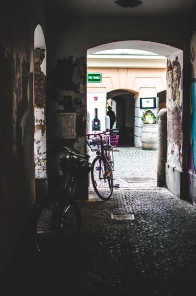 Sorties, panorama, cuisine, les bons plans de Slovénie Secrète à Ljubljana