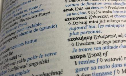 Comment s'aider du dictionnaire pour apprendre une langue ?