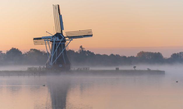 Pourquoi apprendre le néerlandais en 5 raisons ?