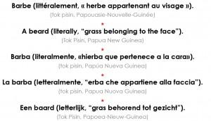 gras belong fes verso
