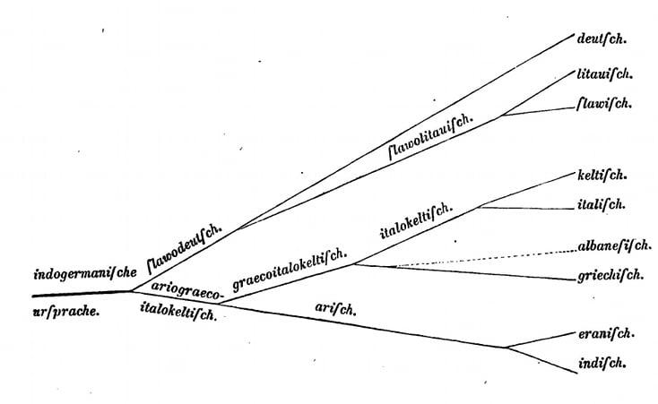 Le stammbaum d'August Schleicher