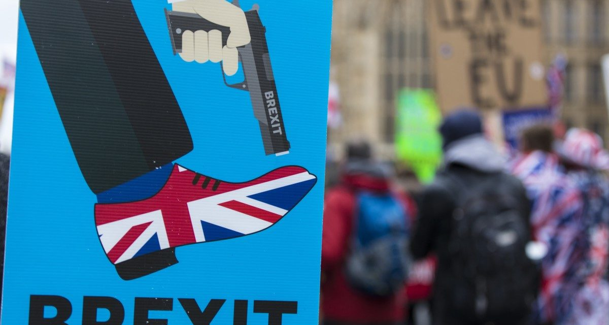 From Brexodus to Brexchosis: the language of leaving the EU